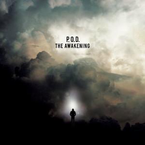 Copertina di The Awakening