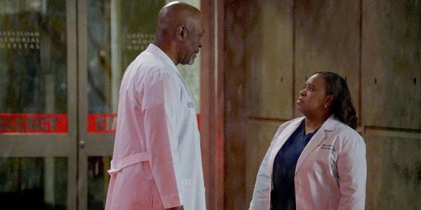 Grey's Anatomy trama episodio 13×09