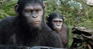 L'alba del pianeta delle scimmie film stasera in tv trama