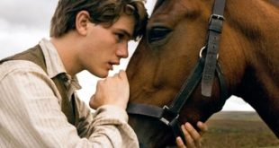 War Horse film stasera in tv Rete 4 trama